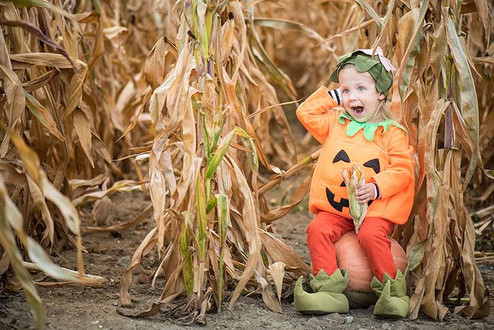 Sinkland Farms Pumpkin Festival